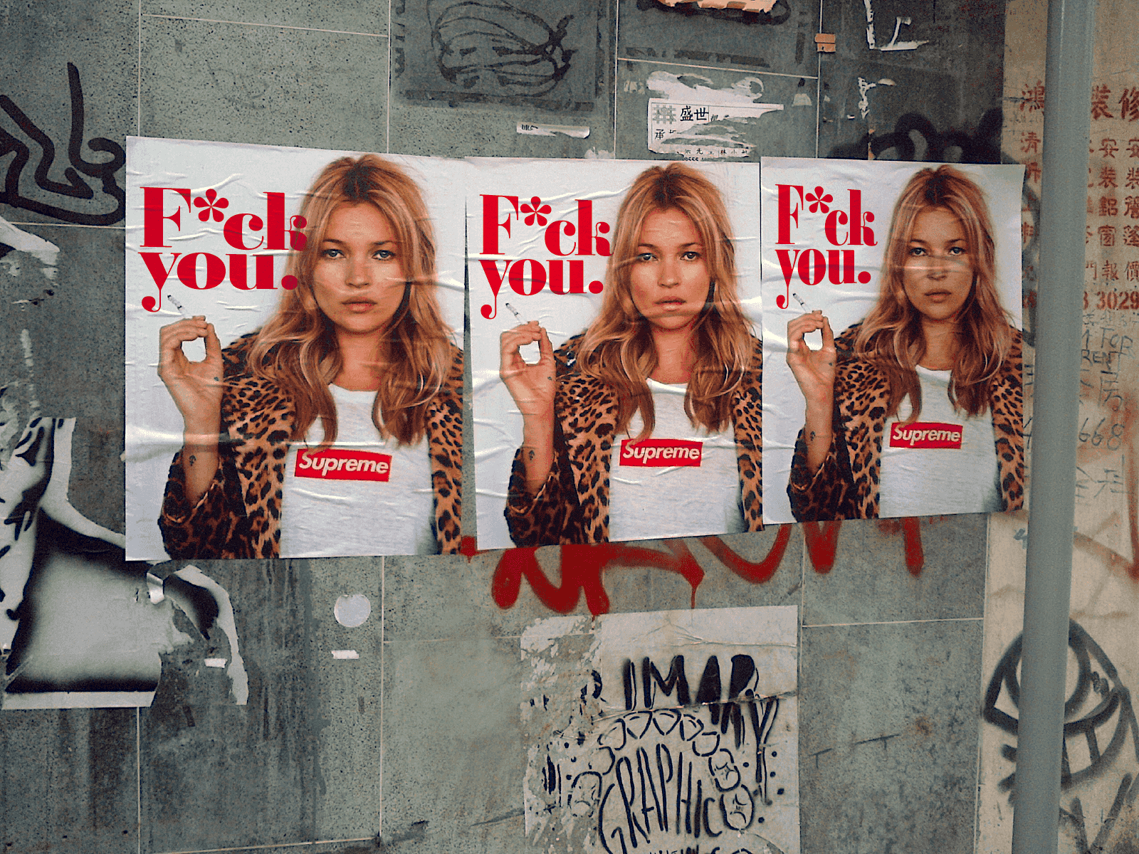 Project: Kate Moss fuck you