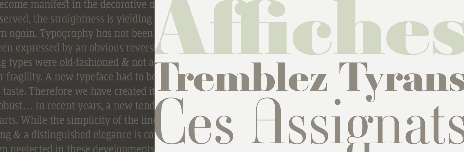 Mislab + Ambroise by Typofonderie